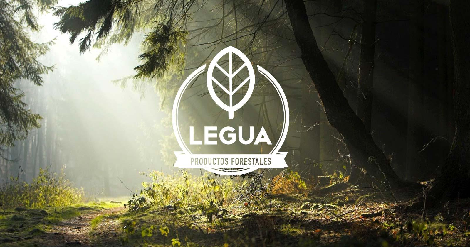 piezas-legua-06_6